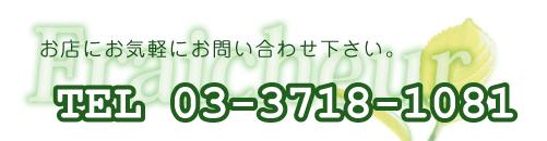TEL03-3718-1081